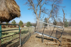 Round Bale Feeder for Goats and Sheep